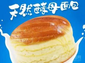 解读桃李面包崛起之谜