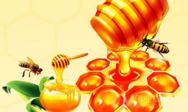 北京蜂业加盟